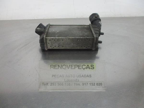 Radiador do Intercooler (20179583).
