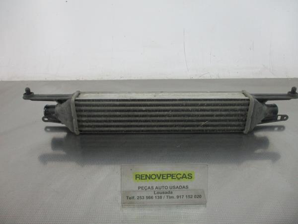 Radiador do Intercooler (20184557).
