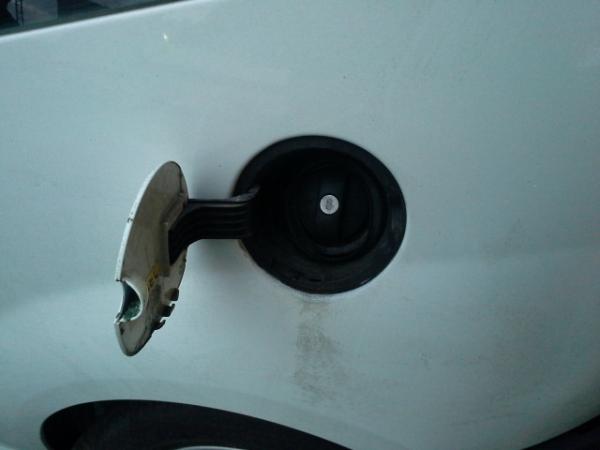 Porta de combustivel (20214483).
