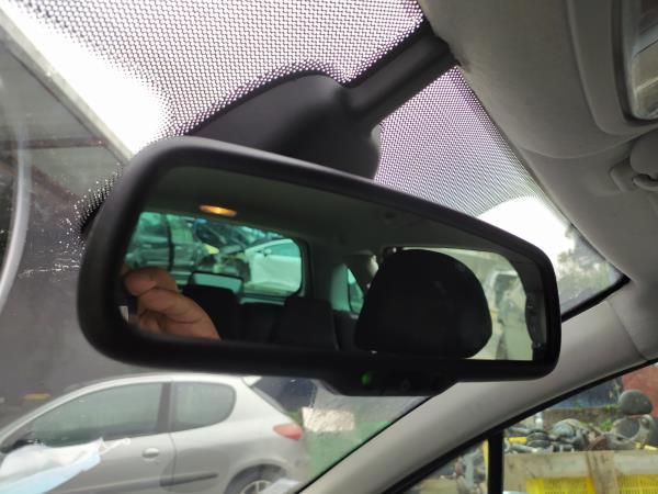 Espelho rectrovisor interior (20248139).