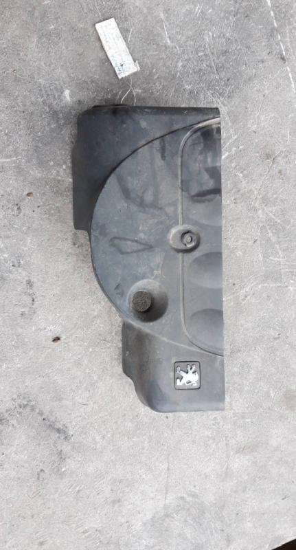Cobertura motor (20225913).