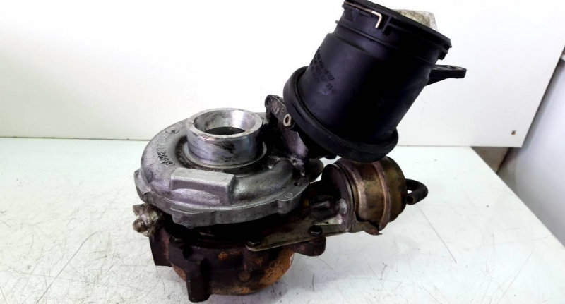 Turbo (20233056).