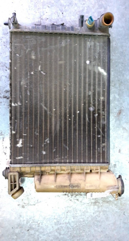 Radiador agua (20234997).