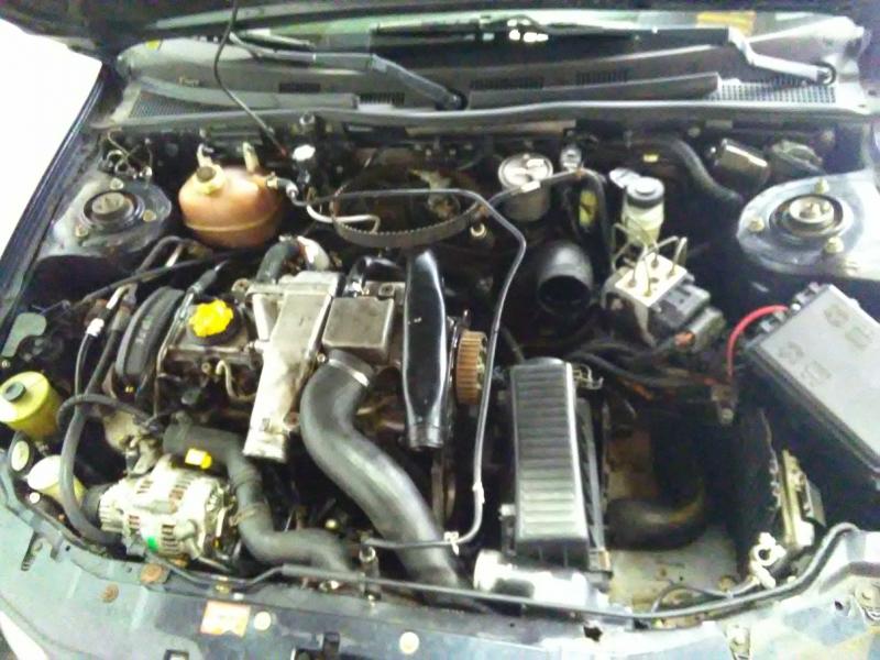 ROVER 25 Hatchback (RF)   99 - 06 (2238595).