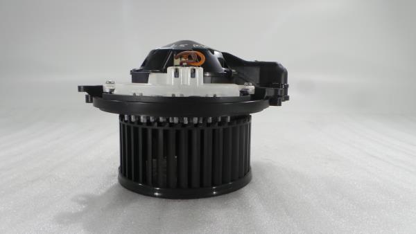 Motor da Sofagem BMW 1 (F20)   11 - 19