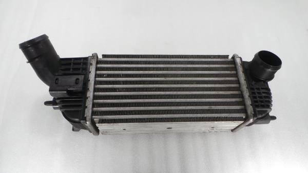 Radiador do Intercooler PEUGEOT 508 I (8D_) | 10 - 18