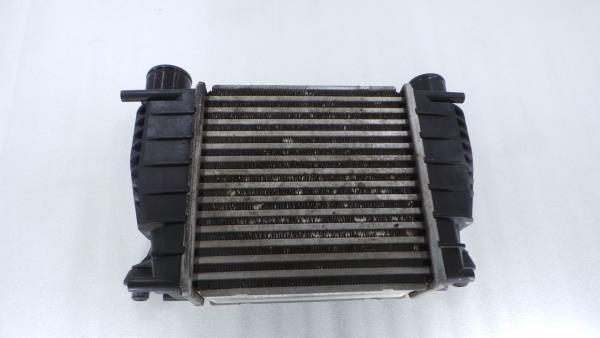 Radiador do Intercooler NISSAN JUKE (F15) | 10 -