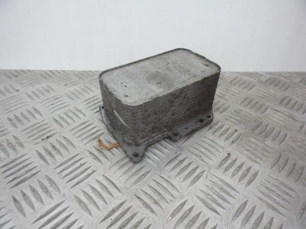 Radiador do Óleo RENAULT TRAFIC II Caixa (FL) | 01 -