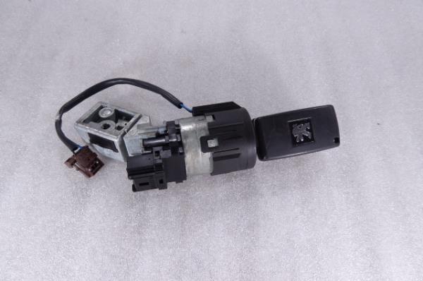 Canhão Ignição PEUGEOT 5008 (0U_, 0E_)   09 - 17