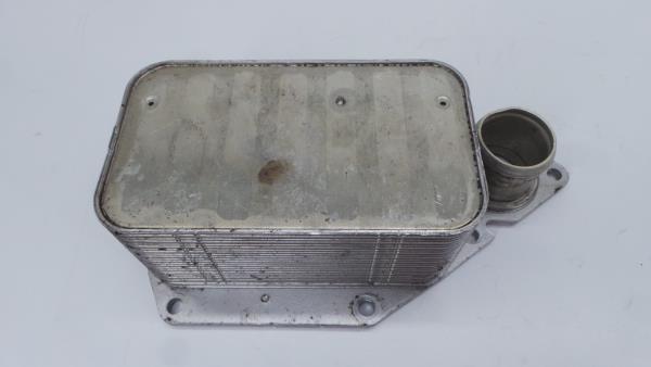 Radiador do Óleo RENAULT MASTER III Camião de plataforma/chassis (EV, HV, UV)   10 -