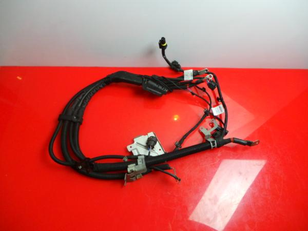 Cablagem Eletrica MERCEDES-BENZ S-CLASS (W222, V222, X222) | 13 -