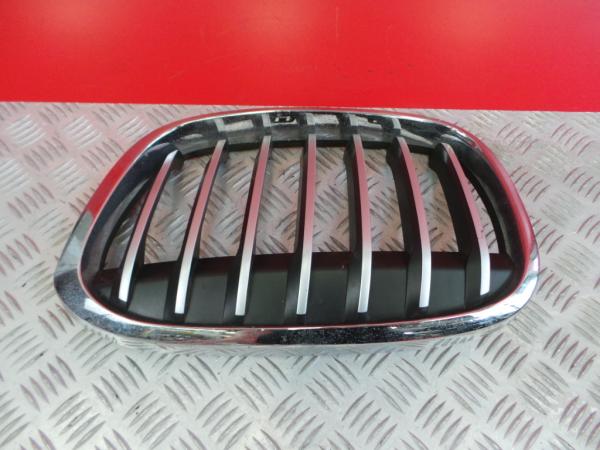 Grelha da Frente BMW X1 (F48) | 14 -