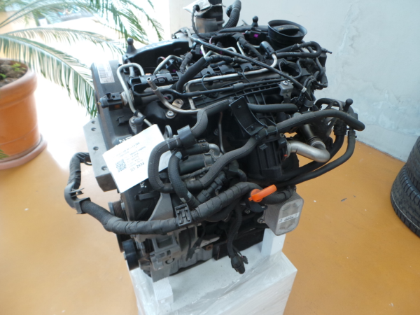 Motor VOLKSWAGEN POLO (6R1, 6C1) | 09 -