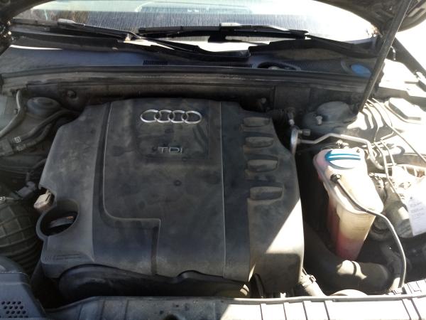 Motor (20203933).