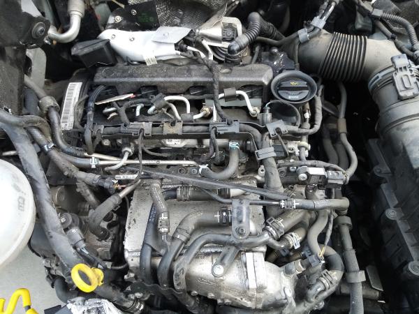 Motor (20205455).