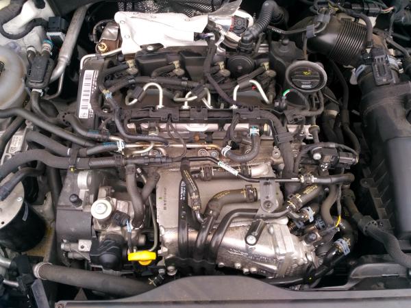 Motor completo (20201781).