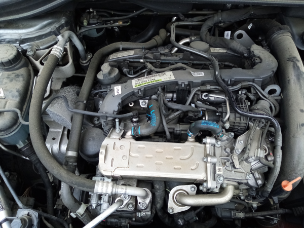 Motor completo (20205778).