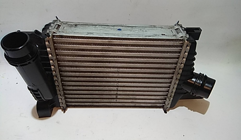 Radiador do Intercooler (20203840).