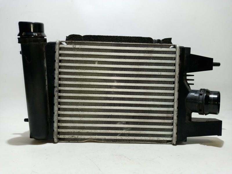 Radiador do Intercooler (20206600).