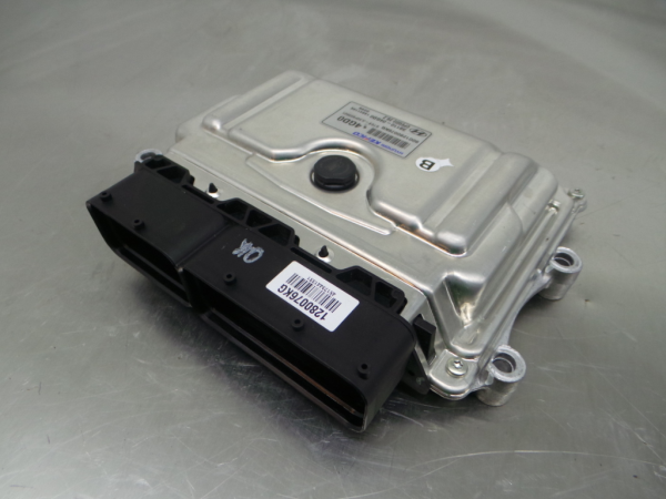 Engine Control Unit (ECU)