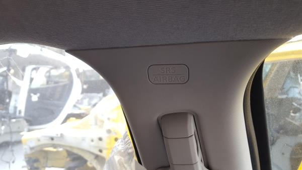 Airbag De Cortina Esq (20309843).