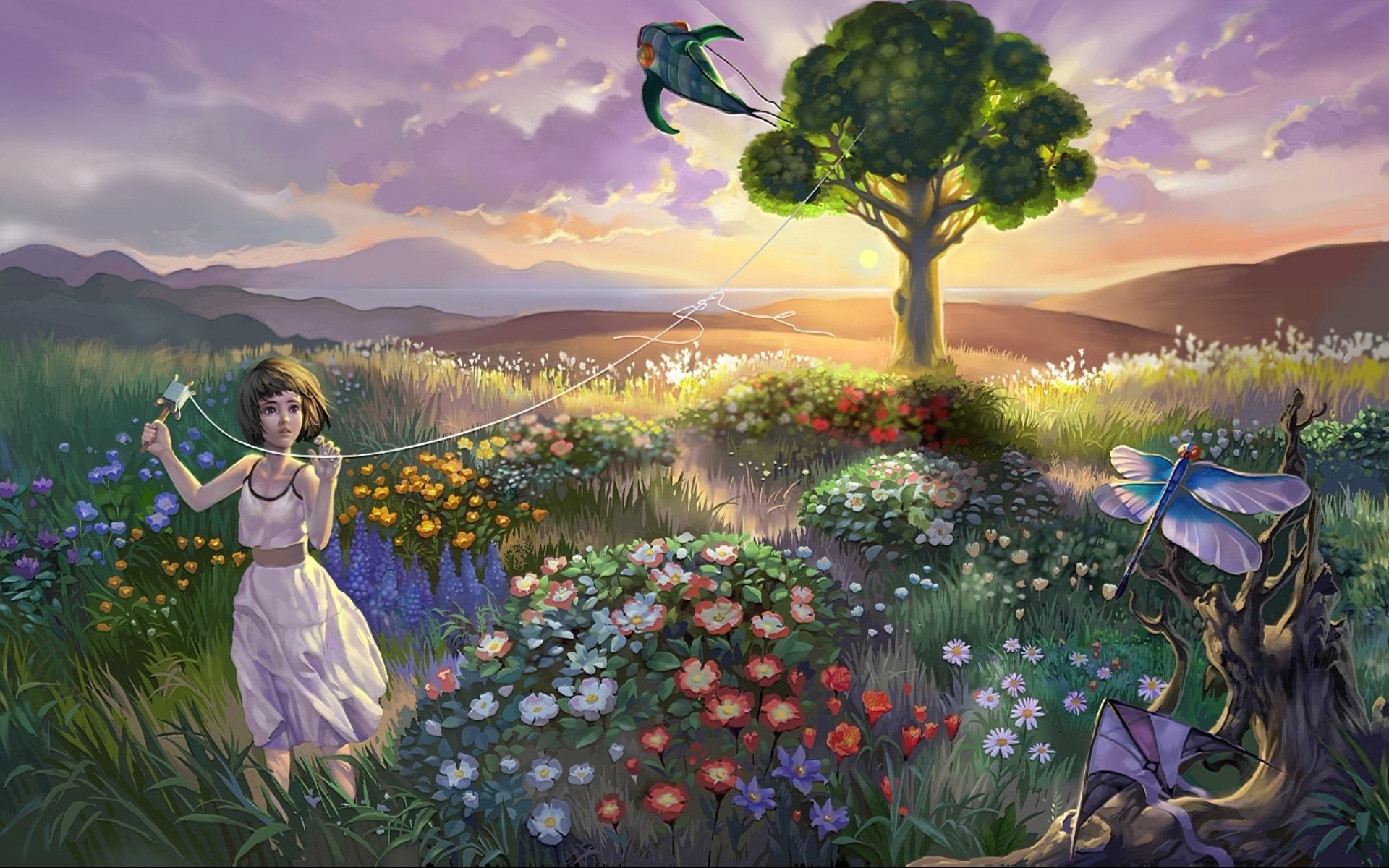 landscape child baby grass flowers birds kite x