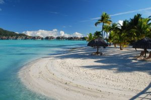 canopies chaise lounges chairs tropics palm trees sand white rest resort bora bora azure Hd Wallpaper