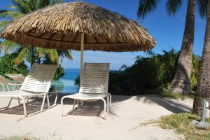 canopy chaise lounge chairs tropics palm trees sand white rest resort Hd Wallpaper