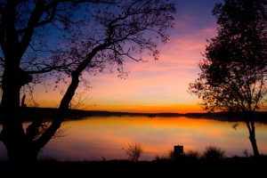 decline trees outlines twilight lake Hd Wallpaper