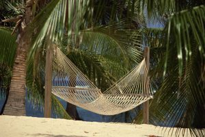 hammock palm trees sand grid Hd Wallpaper