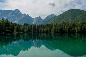 lake forest mountains Hd Wallpaper