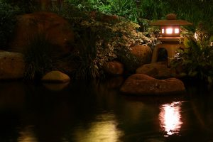 lamp pond light china stones reflection night vegetation Hd Wallpaper