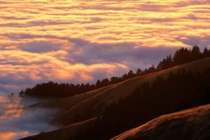 mountains clouds trees coniferous Hd Wallpaper