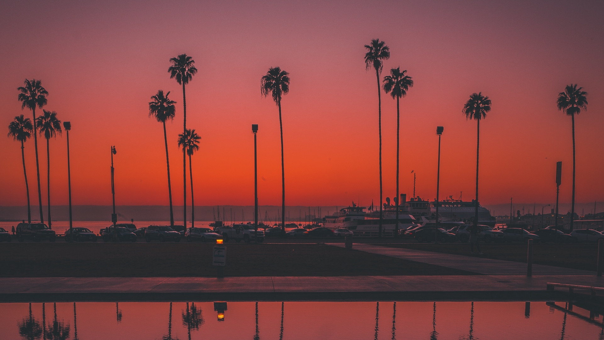 palms sunset san diego
