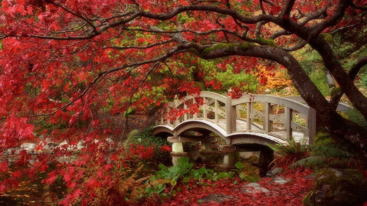 park bridge tre