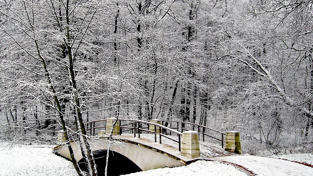 park bridge winter snow hoarfro