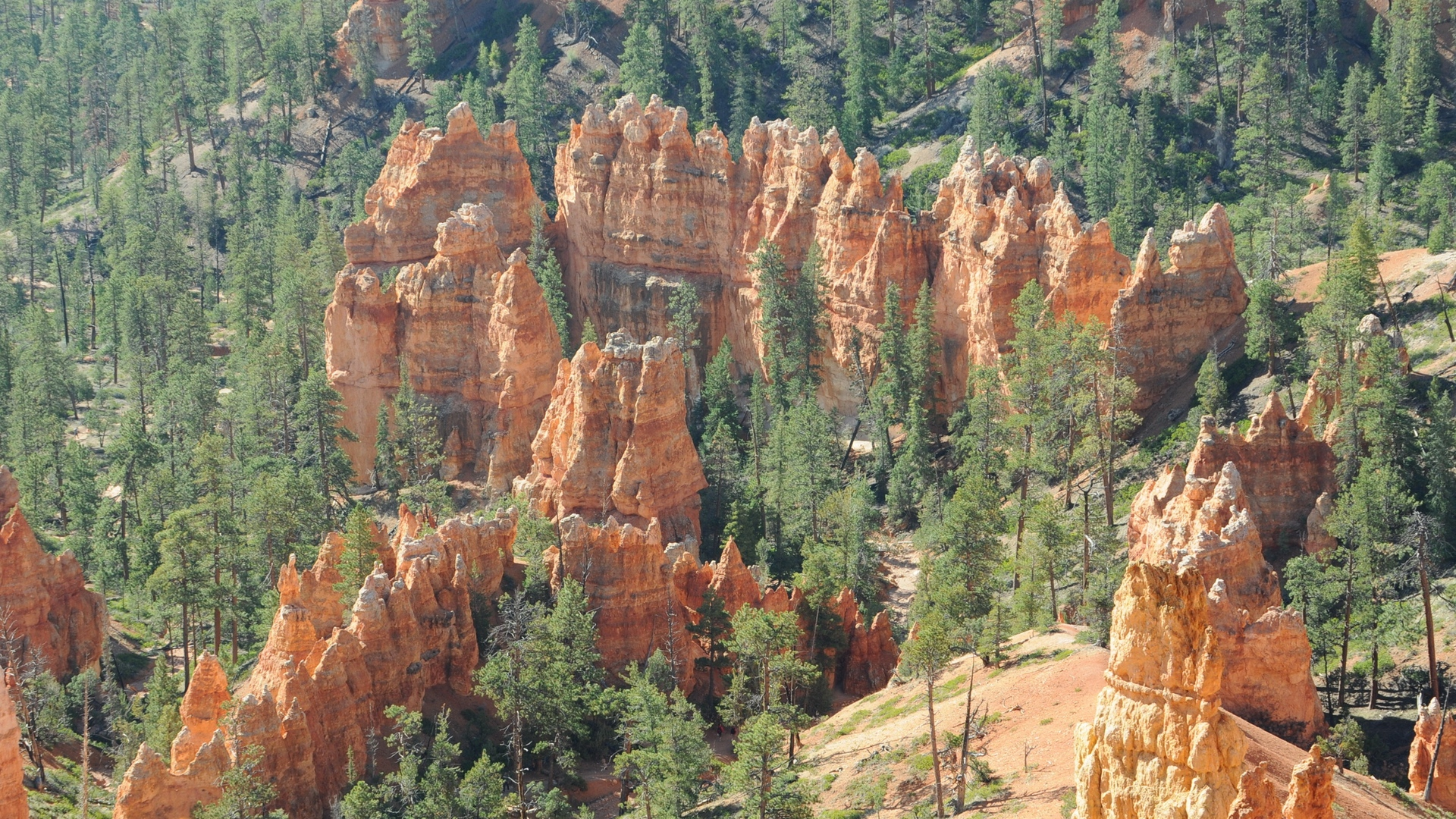 park bryce canyon utah nature