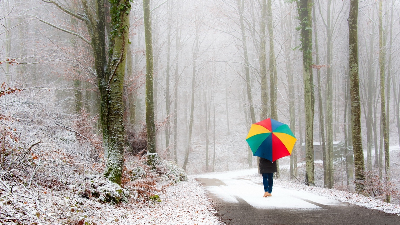 park person umbrella snow road fog wal