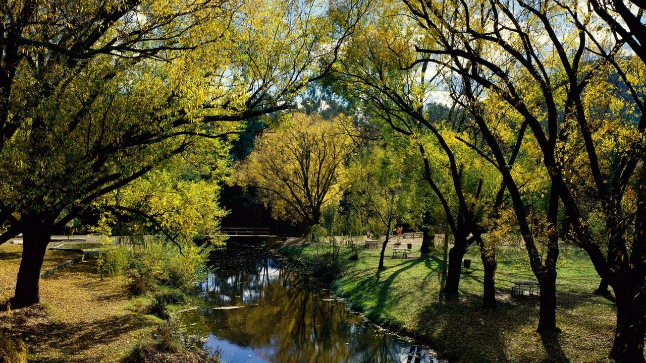 park rest river trees autumn australi
