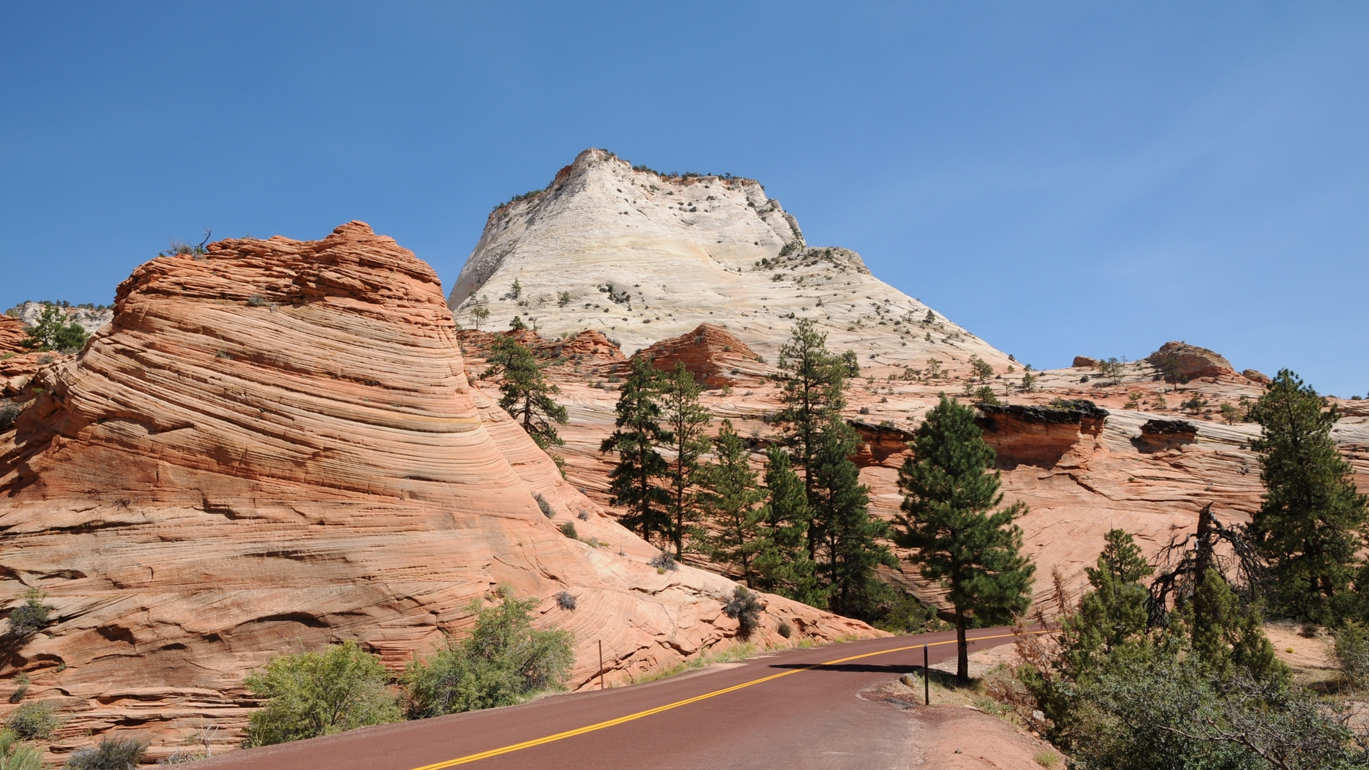 park usa road zion nature