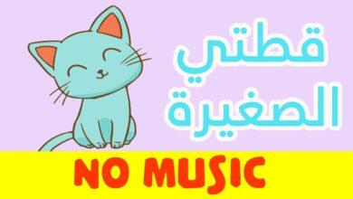 بدون موسيقى