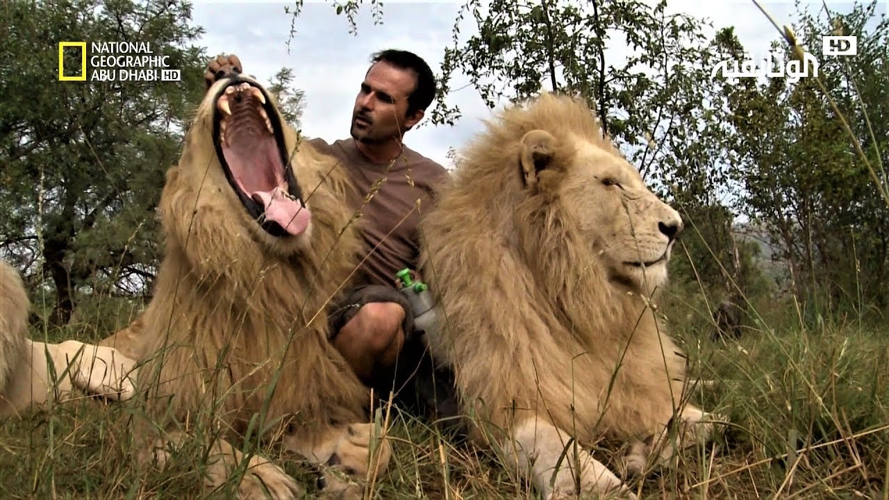 مجموعة افلام وثائقية عن الحياة البرية بدون موسيقى (5)| Wildlife Movie Compilation – No Music