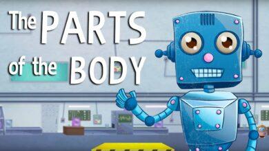 التعرف على أجزاء الجسم بدون موسيقى | Learning about Body Parts - No Music (3 فيديو)