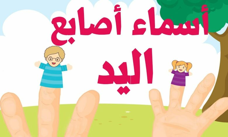 أغنية تعليم اللغة العربية للأطفال أسماء الأصابع - Famille des doigts arabe - Arab finger family song بدون موسيقى