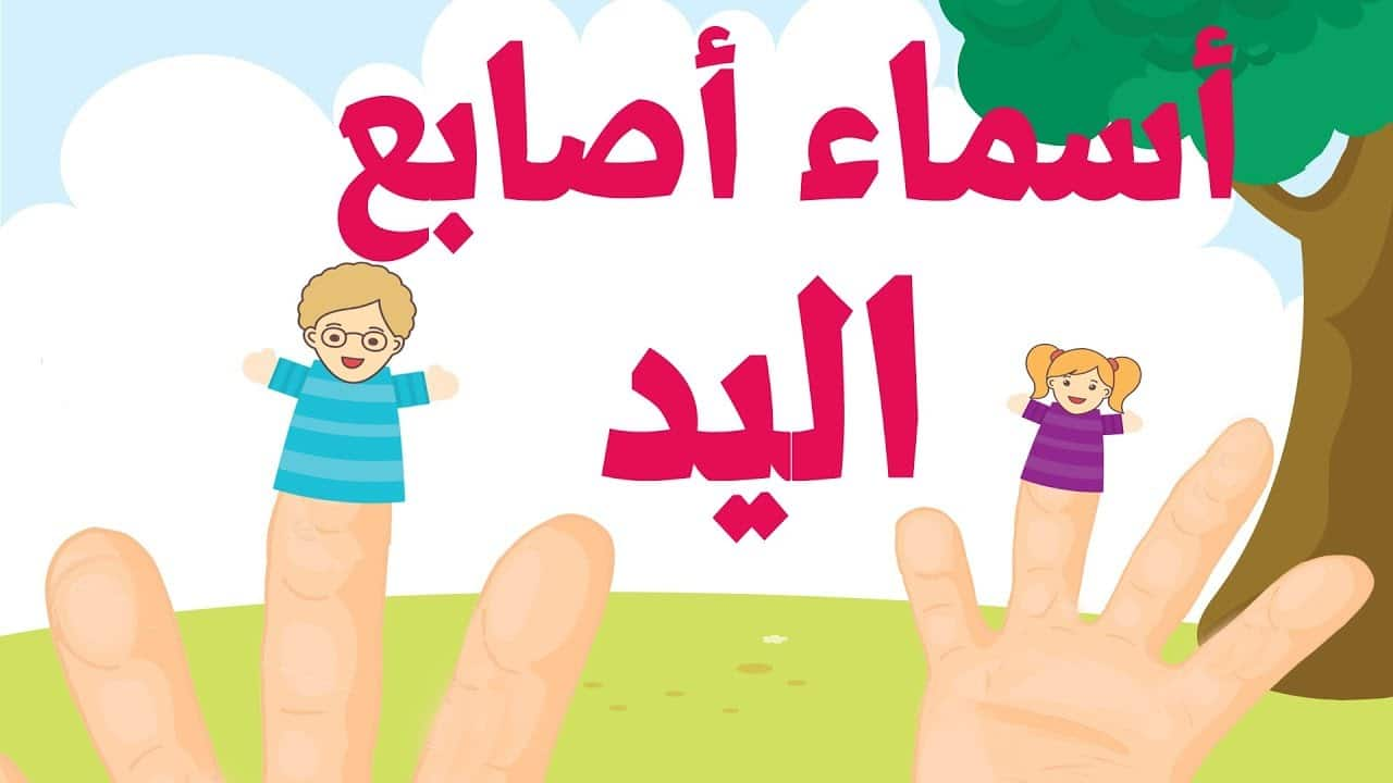 أغنية تعليم اللغة العربية للأطفال أسماء الأصابع – Famille des doigts arabe – Arab finger family song بدون موسيقى