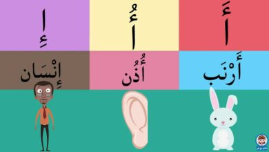 Arabic alphabet for Kids - الحروف العربية للأطفال بدون موسيقى | Arabic alphabet for Kids - Arabic letters for children No Music
