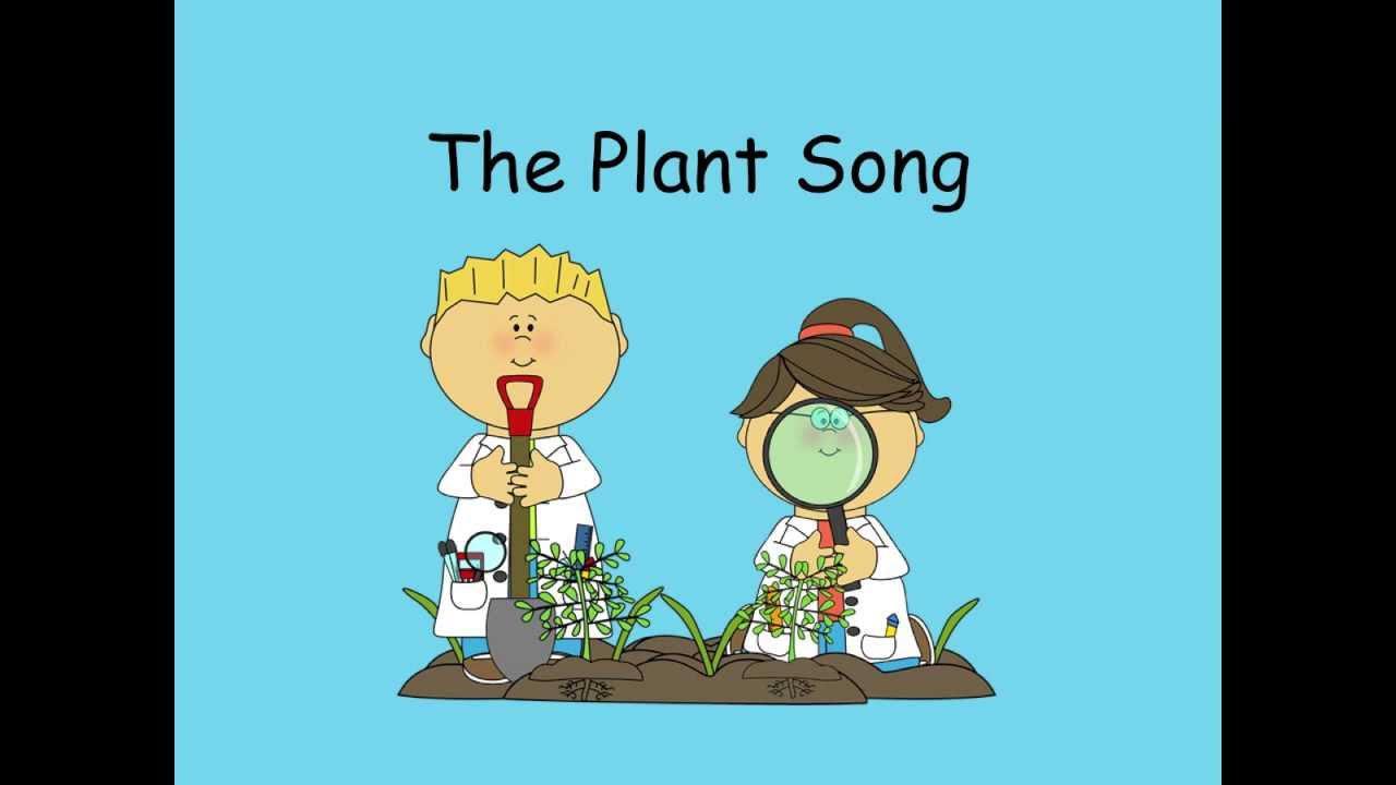 أغنية النبات بدون موسيقى | The Plant Song No Music