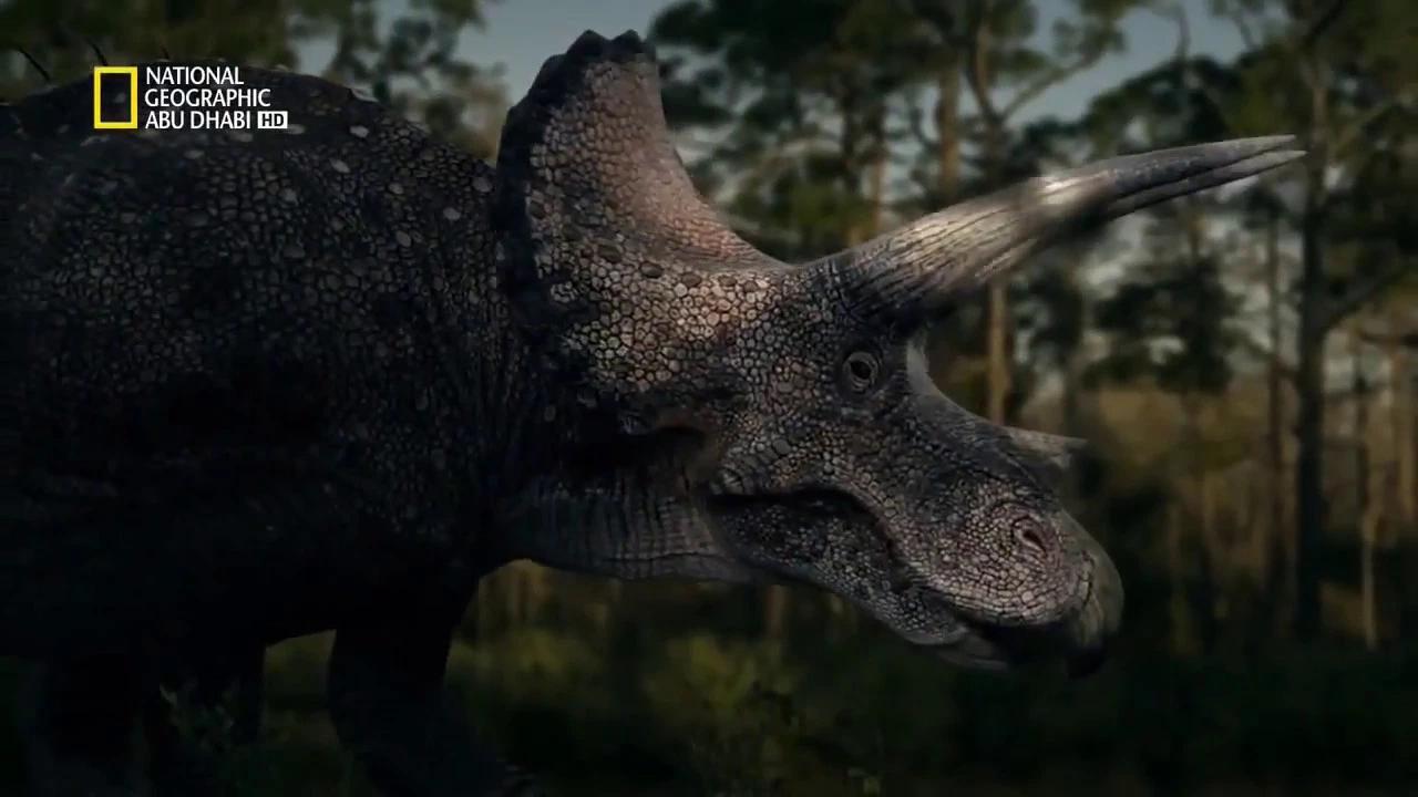 الديناصورات ناشونال جغرفيك بدون موسيقى | Dinosaurs National Geographic No Music