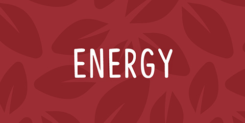 Health Monthly Autumn Energy Products
