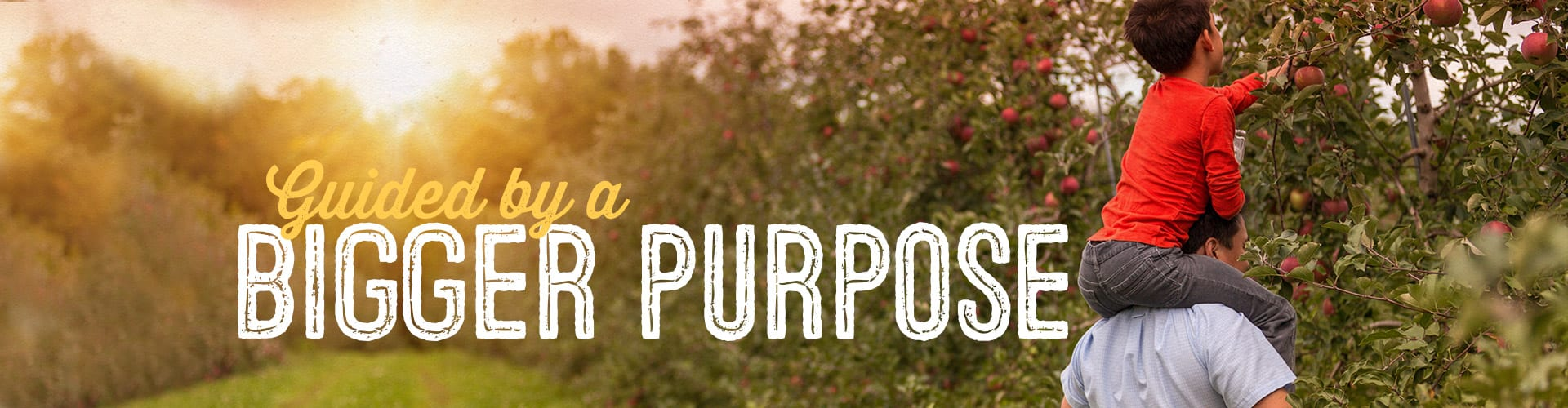 Garden of Life Guided by a Bigger Purpose
